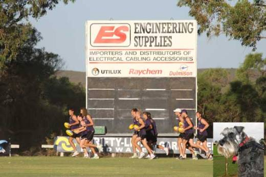 Frankie watching training at Jurien in 2013.
